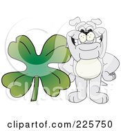 Royalty Free RF Clipart Illustration Of A Gray Bulldog Mascot With A Four Leaf Clover by Toons4Biz