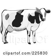 Royalty Free RF Clipart Illustration Of A Dairy Cow In Grayscale