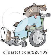 Royalty Free RF Clipart Illustration Of A Dog With A Cast And Bandages Sitting In A Wheelchair