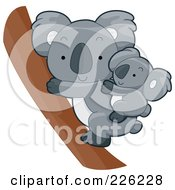 Royalty Free RF Clipart Illustration Of A Cute Baby Koala On Its Mothers Back