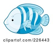 Royalty Free RF Clipart Illustration Of A Cute Blue Striped Fish