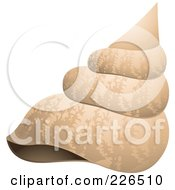 Royalty Free RF Clipart Illustration Of A Sea Shell by TA Images