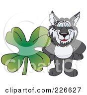 Husky School Mascot With A Four Leaf Clover