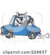 Husky School Mascot Waving And Driving A Car