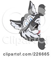 Royalty Free RF Clipart Illustration Of A Husky School Mascot Looking Around A Blank Sign by Toons4Biz