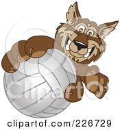 Royalty Free RF Clipart Illustration Of A Wolf School Mascot Grabbing A Volleyball