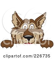 Royalty Free RF Clipart Illustration Of A Wolf School Mascot Looking Over A Blank Sign