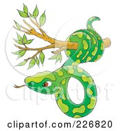 Royalty Free RF Clipart Illustration Of A Green Snake In A Tree