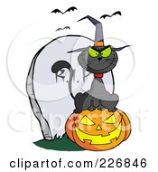 Black Cat Wearing A Witch Hat And Sitting On A Pumpkin By A Tombstone