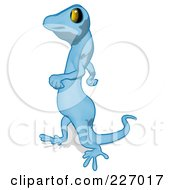 Royalty Free RF Clipart Illustration Of A Blue Cartoon Gecko Walking Left