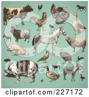 Royalty Free RF Clipart Illustration Of A Digital Collage Of Vintage Farm Animals And Livestock On Turquoise