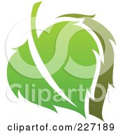 Royalty Free RF Clipart Illustration Of A Green Leaf Logo Icon 8