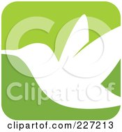 Green And White Hummingbird Logo Icon - 4