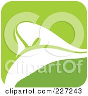 Royalty Free RF Clipart Illustration Of A Green And White Calla Lily Logo Icon