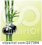 White Frangipani Flower Over A Spa Stone And Bamboo On Green