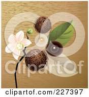 Royalty Free RF Clipart Illustration Of A Spa Background Of Decorative Balls An Orchid Leaves And Candles On Wood Grain by Eugene