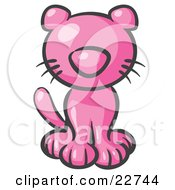 Clipart Illustration Of A Cute Pink Kitty Cat Looking Curiously At The Viewer