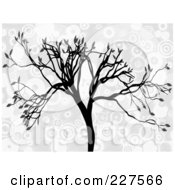 Royalty Free RF Clipart Illustration Of A Silhouetted Tree With Gray Leaves Over Gray And White Circles by mheld