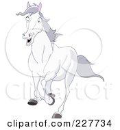 Scared White Horse Running