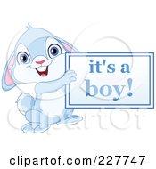 Cute Blue Rabbit Holding An Its A Boy Sign