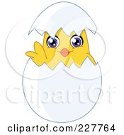 Royalty Free RF Clipart Illustration Of A Cute Chik Looking Through A Shell