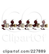 Royalty Free RF Clipart Illustration Of A Line Of 3d Ants Carrying Boxes 1 by Julos