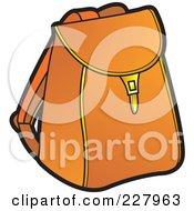 Brown School Bag