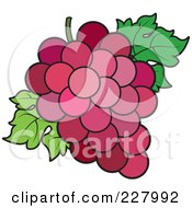 Royalty Free RF Clipart Illustration Of A Bunch Of Red Grapes And Leaves by Lal Perera