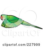 Royalty Free RF Clipart Illustration Of A Green Parrot Flying by Lal Perera