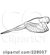 Royalty Free RF Clipart Illustration Of A Coloring Page Outline Of A Parrot Flying by Lal Perera