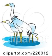 Royalty Free RF Clipart Illustration Of Three Cranes Wading