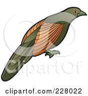 Royalty Free RF Clipart Illustration Of A Green Billed Coucal Bird by Lal Perera