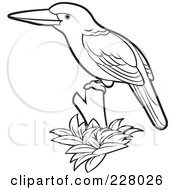 Royalty Free RF Clipart Illustration Of A Coloring Page Outline Of A Perched Kingfisher Bird by Lal Perera