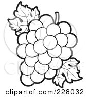 Royalty Free RF Clipart Illustration Of A Coloring Page Outline Of A Bunch Of Grapes And Leaves by Lal Perera