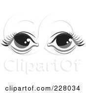 Royalty Free RF Clipart Illustration Of A Pair Of Black And White Feminine Eyes