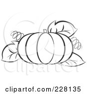 Royalty Free RF Clipart Illustration Of A Coloring Page Outline Of A Pumpkin With Tendrils And Leaves by Lal Perera