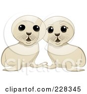 Royalty Free RF Clipart Illustration Of Two White Seal Pups