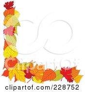 Corner Border Of Green Orange Red And Yellow Autumn Leaves With Copyspace