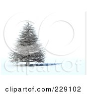 Royalty Free RF Clipart Illustration Of A 3d Dead Evergreen Tree by chrisroll