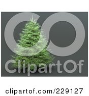 Royalty Free RF Clipart Illustration Of A Healthy Evergreen Christmas Tree On A Gray Background by chrisroll