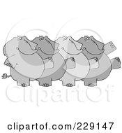 Chorus Line Of Elephants Dancing