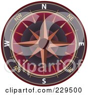 Ornate Compass 4