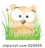 Royalty Free RF Clipart Illustration Of A Cute Bear In Grass Near A Ladybug by Qiun