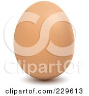 Royalty Free RF Clipart Illustration Of A Brown Egg