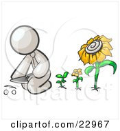 Clipart Illustration Of A White Man Kneeling By Growing Sunflowers To Plant Seeds In A Dirt Hole In A Garden