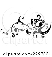 Black And White Flourish Design 12