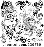 Digital Collage Of Black And White Flourish Designs 1
