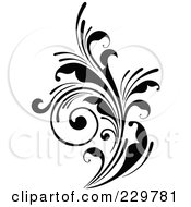 Black And White Flourish Design 11