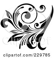 Black And White Flourish Design 5