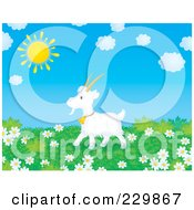 Royalty Free RF Clipart Illustration Of A Goat In A Meadow Of Daisies